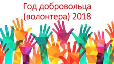 2018 год волонтера